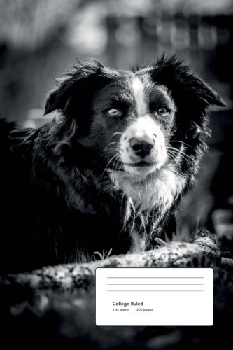 Collie Dog College Ruled Composition Notebook -