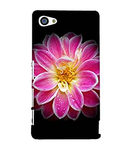 Pink Flower 3D Hard Polycarbonate Designer Back Case Cover for Sony Xperia Z5 Compact :: Sony Xperia Z5 Mini