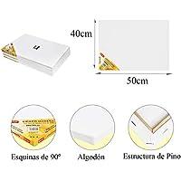 Pack de 4 lienzos 40 x 50 cm de 100% algodón apto para óleo, acrílico y mixto, pre-estirado, color BLANCO. Libre de ácido.