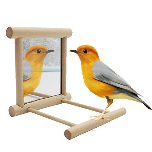 Supporto in legno naturale per uccelli, ideale come altalena, per gabbia, per pappagalli, parrocchetti, calopsitte, inseparabili, fringuelli, cacatua, pappagalli cenerini, passeri