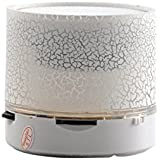 Ae Zone Mini Bluetooth Speaker With USB Port / Memory Card Slot With Disco Lights Awesome Effects--BT-WHITE-NEW