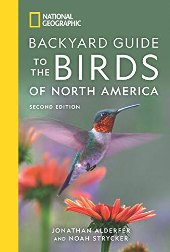 Blue Jay Feeder (National Geographic Backyard Guide to the Birds of North America, 2nd Edition)