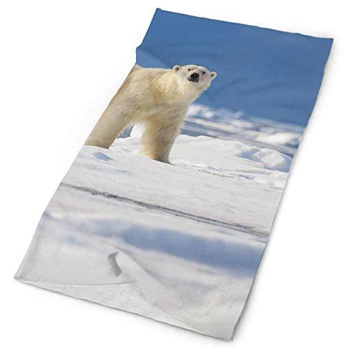 jingqi A Polar Bear Walks Across an Ice Floe Near Headband Bandana£¬Outdoor Multifunctional Headwear,Magic Scarf for Men Women 19.7x9.85inch(50x25cm)