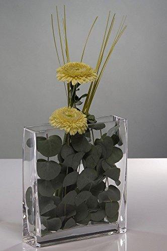 Sandra Rich Glasvase, Glasschale, Dekoglas Jardiniere rechteckig 20x5cm H 15cm