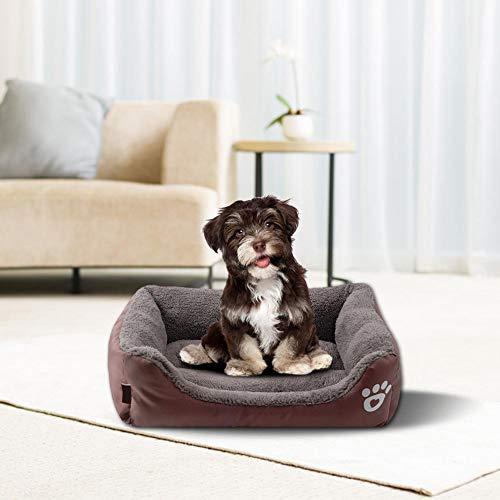iBaste Haustier Hundekorb Bett für Hunde Katzen Hundesofa Kissen Weich Hundebett Warm Hundeschlafplatz Katzendecke Hundematratze Tierbedarf -