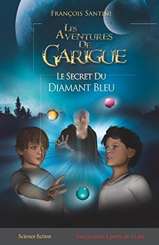 Le secret du diamant bleu par F François Henri Santini S
