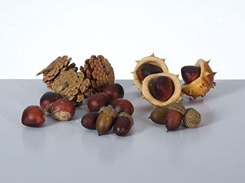 autunno-miscela-con-castagne-e-ghiande-pigne-colori-misti-oe2-5-cm-in-plastica-18-pezzi