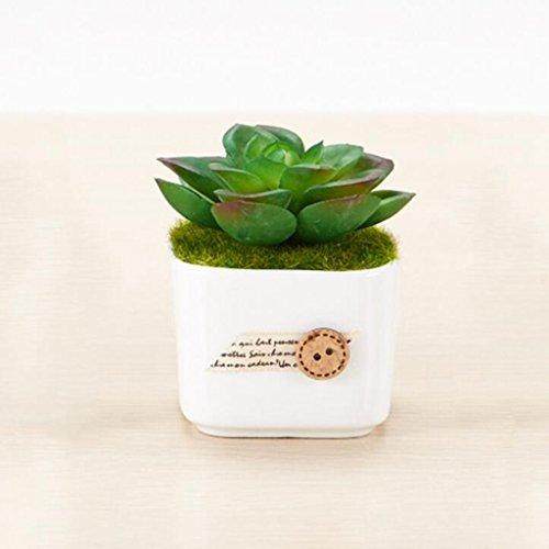 Aoligei Simulation Mini Keramik Tasse Yuru Fleisch vergossen Hause Dekoration Möbel gefälschte Blumen jeden Satz von Töpfen 5*8cm