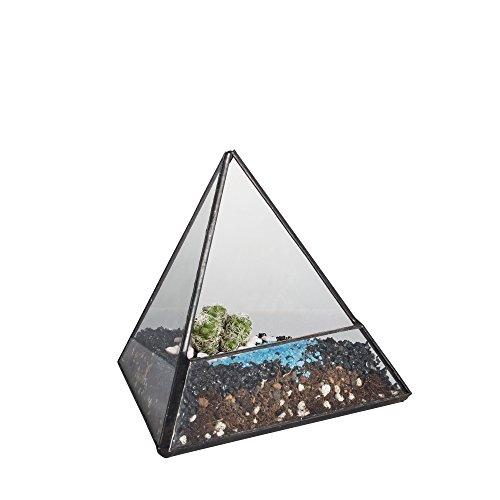NCYP 12cm Kleine Pyramide Geometrische Glas Terrarium Modern Handgefertigt Karton Air Halterung Garten Home Deko Blumen Topf Balkon Fensterbank Tabletop Display Pflanzgefäß für Nahrhafte Moos Farn