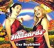 Gay Boyfriend