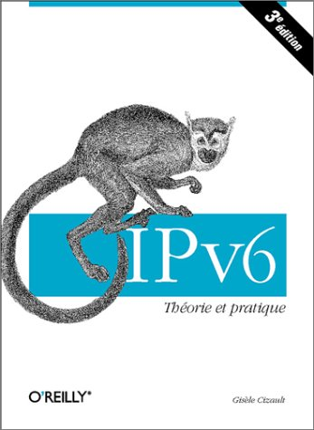 IPv6 : Théorie et pratique par Gisèle Cizault
