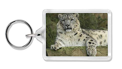 Schöne Snow Leopard Foto Schlüsselbund TierstrumpffüllerGeschenk