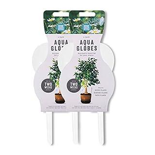 Aqua Globes - Indoor Outdoor Plants Watering System (Pack of 4)