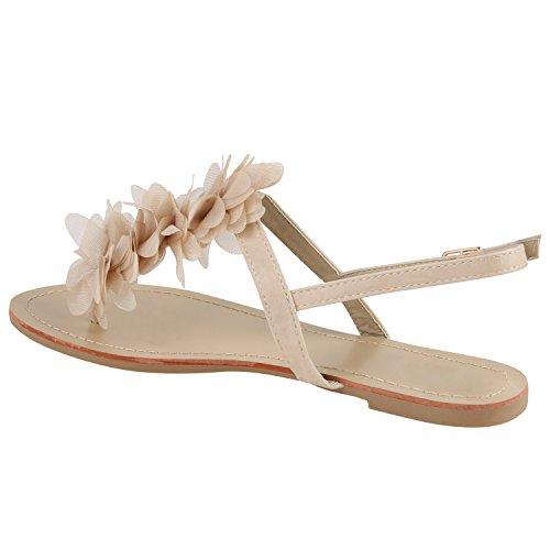 Damen Sandalen Zehentrenner Sommer Schuhe Flats Blumen Creme Blumen