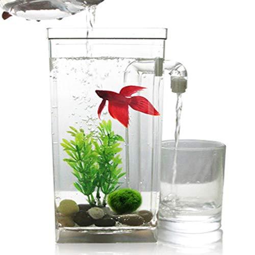 Lshuaidj acquario acquario serbatoio acquario pigro autopulente desktop mini plastica creativo pesce rosso serbatoio piccolo acquario serbatoio di pesci