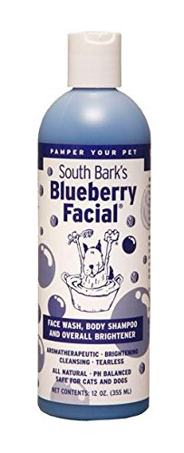 south-barks-blueberry-facial-12oz