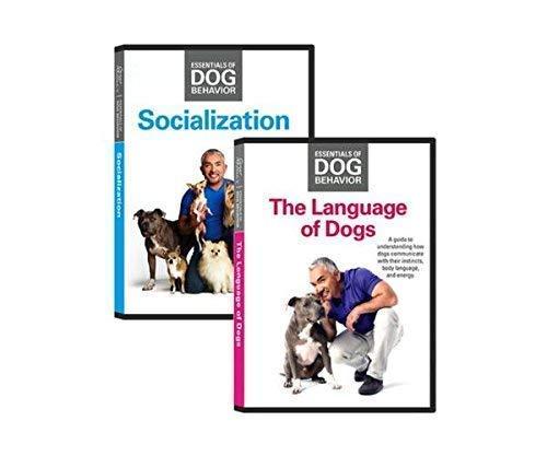 Cesar Millan Essentials of Dog Behaviour DVD Bundle - The Language of DogsTM and SocializationTM DVDs -