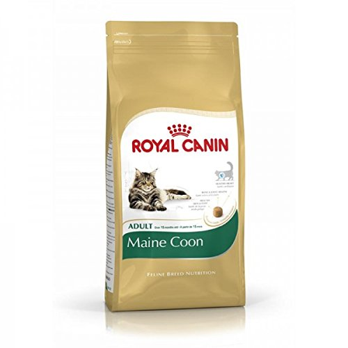 Royal Canin Maine Coon Katzenfutter, 10 kg