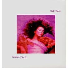 Hounds of Love [Vinyl LP]