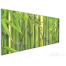 Wallario Küchen Rückwand | Glas Mit Motiv Grüner Bambuswald In  Premium Qualität: Brillante