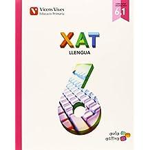Xat 6 (6.1-6.2-6.3) Valencia (aula Activa)