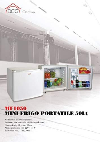 Minifrigo portatile caldo freddo 50 litri DCG MF1050