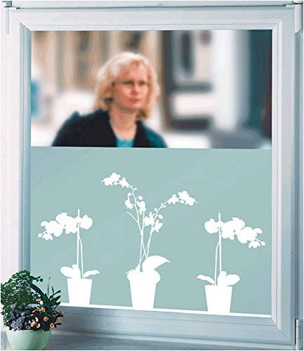 WENKO Sichtschutzfolie, Orchidee Fensterfolie
