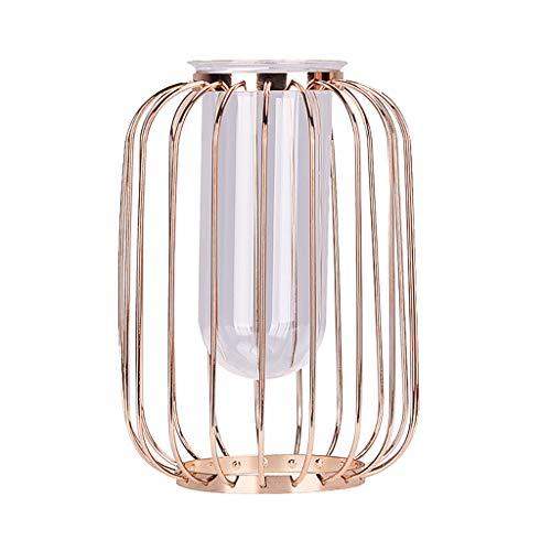 Laile Nordic Minimalistisches Blumenregal Eisen Geometrische Kurze Vase Blumenständer Ornamente,Nordische leichte Luxussch glasreagenzglas-Hydroponische Blume,Minimalistischer Auszug