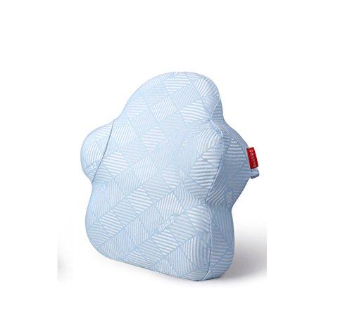 LAD-I Chaise De Bureau Coussin Dos Coussin Lombaire Soutien pour Votre Maison, Chaise De Bureau Et Voiture, Blue2