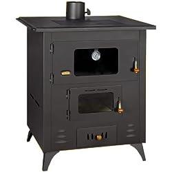 Poêle à bois Réchaud de cuisson en fonte Top Cheminée combustible solide four 14kW