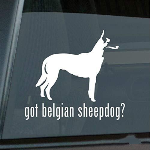 wandaufkleber 3d Wandaufkleber Schlafzimmer Auto Aufkleber Auto Aufkleber Got Belgian Sheepdog Aufkleber Die Cut V2 Window Decal Größe (Zoll): 6.00 X 5.40 -