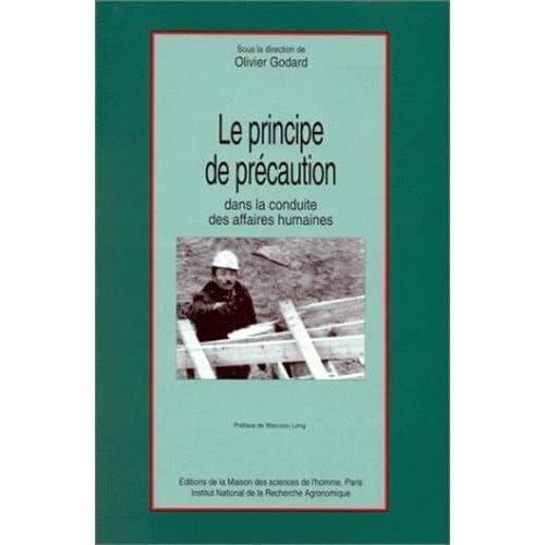 Le principe de précaution dans la conduite des affaires humaines