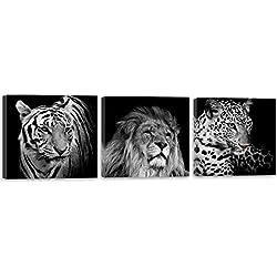 Feeby Frames, Cuadro en lienzo - 3 partes - Panorámico, Cuadro impresión, Cuadro decoración, Canvas 90x30 cm, LEÓN, TIGRE, ELEFANTE, ANIMALES, ÁFRICA, SAFARI, BLANCO Y NEGRO