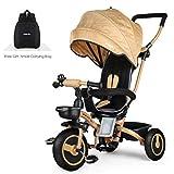 Fascol Dreirad 4 in 1 Klappbar Kinderdreirad Kinderwagen mit 360° Drehsitz Baby Dreirad mit Abnehmbarer Sonnendach Schubstange ab 6 Monate bis 5 Jahren, Gold