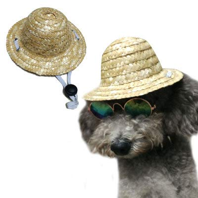 (ZMMAperücke Katze Hund Hut perücke Haar hat die kleine Prinzessin zöpfe lustig perücke Kopfschmuck,Strohhut,xs)