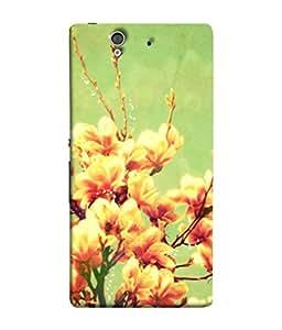 PrintVisa Designer Back Case Cover for Sony Xperia Z :: Sony Xperia ZC6603 :: Sony Xperia Z L36h C6602 :: Sony Xperia Z LTE, Sony Xperia Z HSPA+ (Painted Animated Design Flowers Nature)