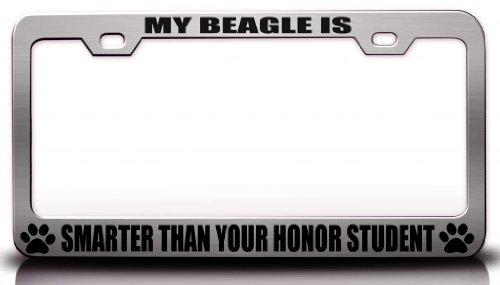 My Beagle ist schlauer als Ihr Honor Student Pet Stahl Metall Nummernschild Rahmen CH # 52
