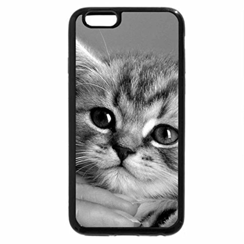 iphone-6s-plus-case-iphone-6-plus-case-black-white-hand-blue-eyes-kitten-grey-cat-cute-animal-whiska