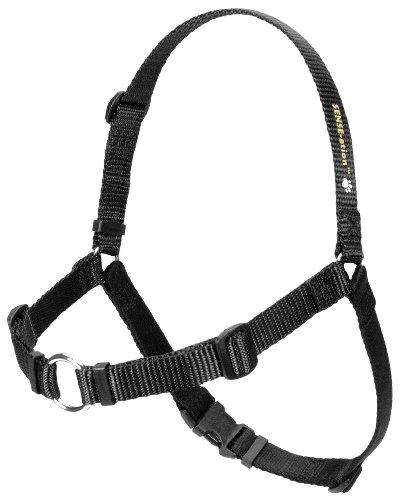 Erziehungsgeschirr für temperamentvolle Hunde – Das SENSEation Harness Erziehungshalsband für Hunde, die stark an der Leine ziehen – Anti Zieh Garantie! (Schwarz, ML 1.9cm)