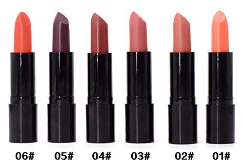 AYA Matte Lipstick (Set of 6) pink, red, brown shades #1 to 6