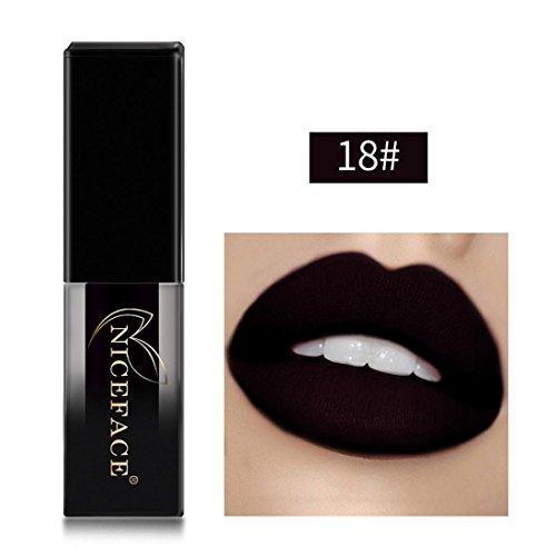Huihong NICEFACE 18 Schattierungen matte Lippen Dessous flüssige Lippenstift, langlebig und wasserdicht. (Sexy 18)