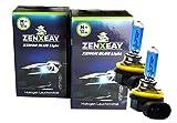 H11 Xenon Optik Auto Lampe, 55W 12V Super White Vision Halogen, 2 Stück, passgenau für diverse Pkw