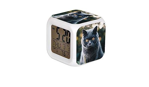 GIAPANO Colock Alarme LED 7 Couleurs Desk Gadget Alarme Thermom/ètre num/érique Cube de Nuit Lumineux D/écoration de Maison Colock Photos de Chat Blanc Noir et Marron