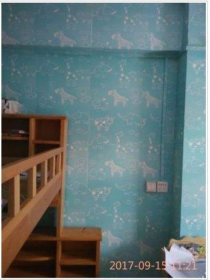 REAGONE elegantes Haus Landschaft Tapete selbstklebende Jungen großen floralen Koreanischen Schlafzimmer Imitation Brick Hintergrund frisches Holz Aufkleber, Peacock Blue 10 m Blau Zoo, Groß
