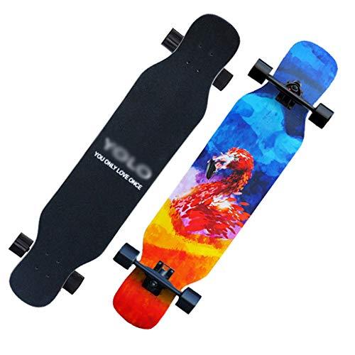 GAIXIA Roller Maple Long Board Teen Pinsel Street Dance Board Anfänger Doppel Rocker Roller Snowboard (Color : C) (Roller Board Rocker)
