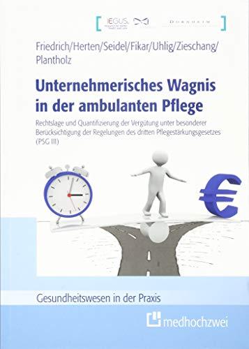 Unternehmerisches Wagnis in der ambulanten Pflege (Gesundheitswesen in der Praxis)