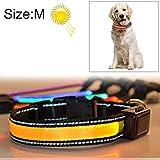 KYS Hundehalsband 40-50cm, Halsumfang Größe: M, Metier und Gravid Dog Pet Solar + USB-Lade-LED-Lichtkragen (Großauswahl : Hc4489y)