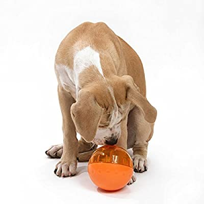 OurPets IQ Treat Ball Interactive Food Dispensing Dog Toy
