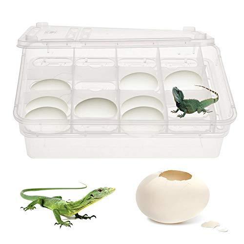 Falliback Inkubationsbox Zuchtbox Inkubator Tragbarer Brutkasten Für Reptilien 24 Eierschalen Für Kleine Reptilienbrutkästen Wie Eidechsen