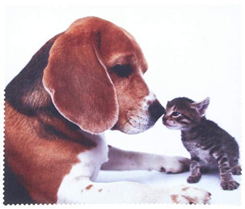 Mikrofasertuch mit Motiv Beagle mit Babykatze - 17,5 x 15,0 cm - Brillenputztuch aus Microfaser